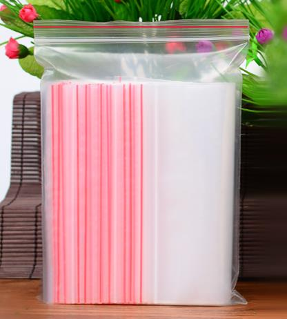 Transparent  plastic  Zip/Ziplock  bag A